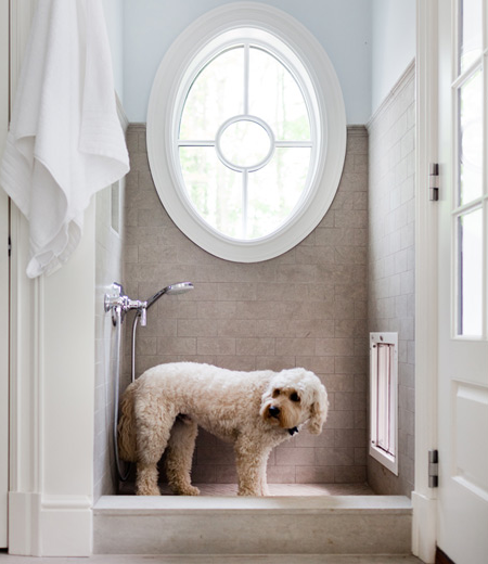 Dog Rug To Catch Dirt: Remodeling With Pets
